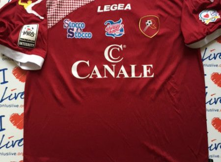 Shirt Match worn REGGINA 2014-2015
